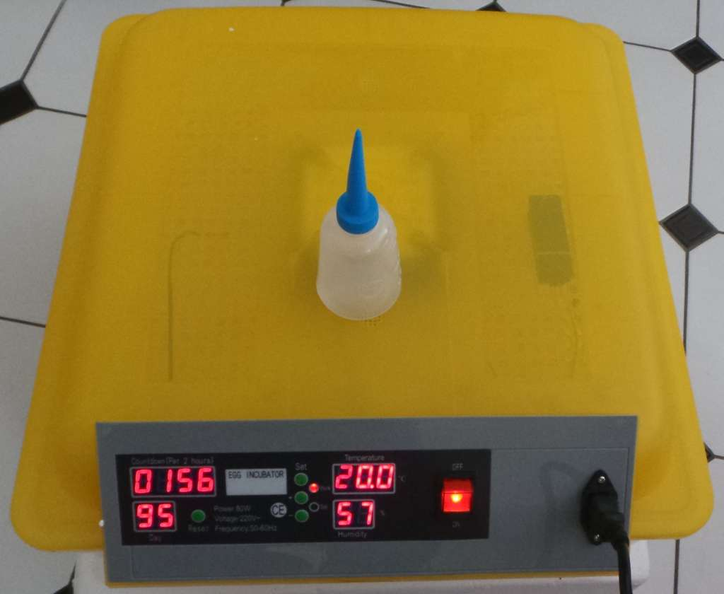 Automatic 48 Egg Incubator for Chicken and Poultry