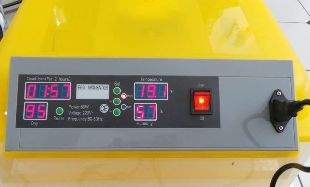 Automatic 48 Egg Incubator For Chicken And Poultry Dawn